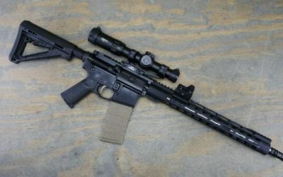 Palmetto State Armory AR-15 Build Review