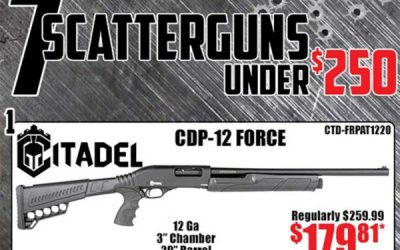 7 Scatterguns Under $250.00 ~ Kentucky Gun Co Has Shotgun Inventory! FREE S&H Options