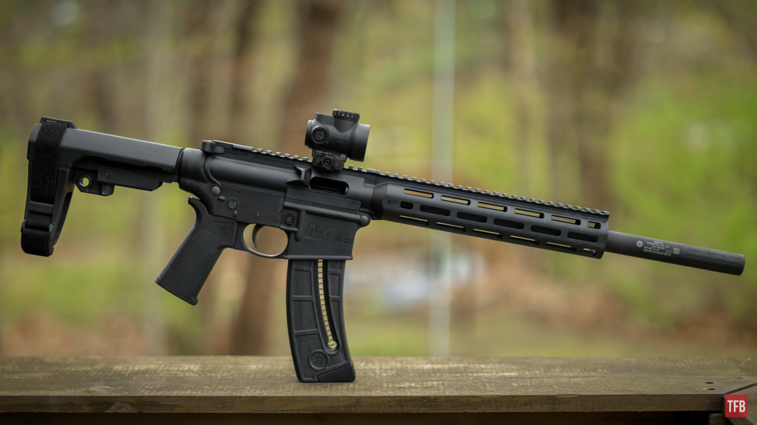 SILENCER SATURDAY #175: Plinking With The Gemtech Integra 15-22