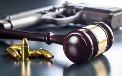PA Appeals Court Holds Township Zoning Subject to Second Amendment