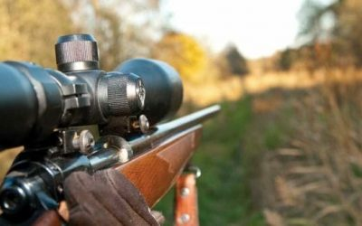 IL: Ban on Guns in Forest Preserve District is Unconstitutional
